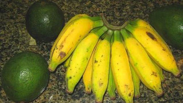 Bananas ripen avocados!