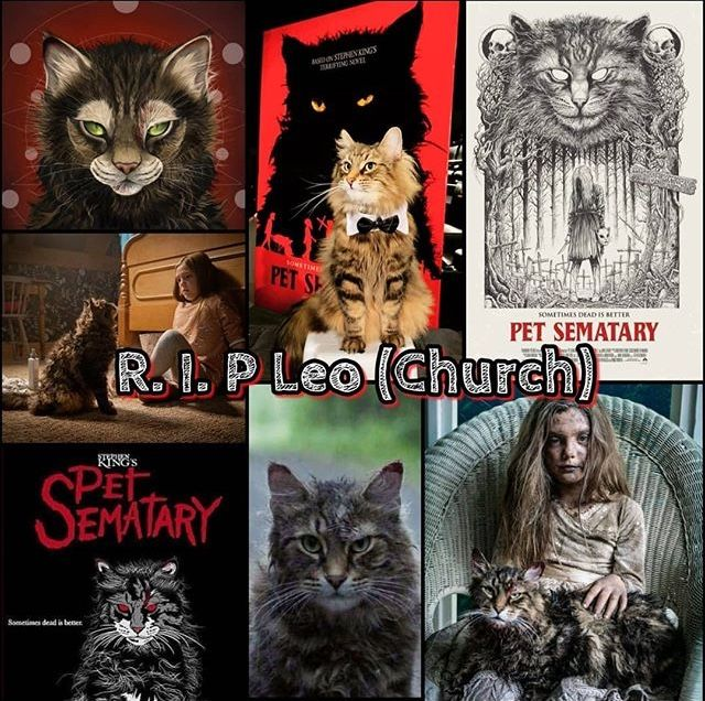 RIP Leo, we'll always remember you. Pet sematary, Horror