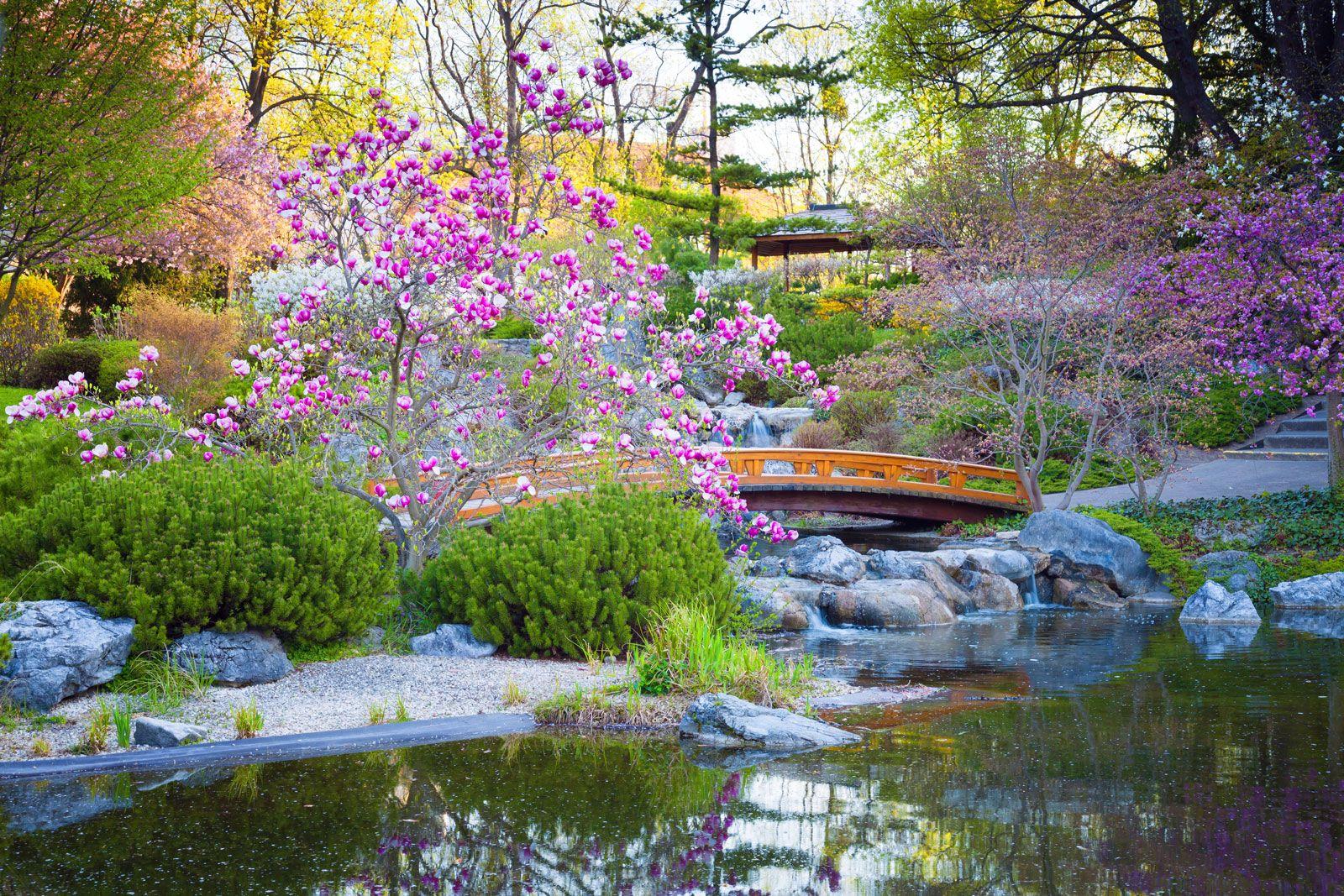 Https Cdn Britannica Com 37 191237 050 574791a6 Garden Japanese Jpg In 2020 Japanese Water Gardens Japanese Garden Japanese Garden Design