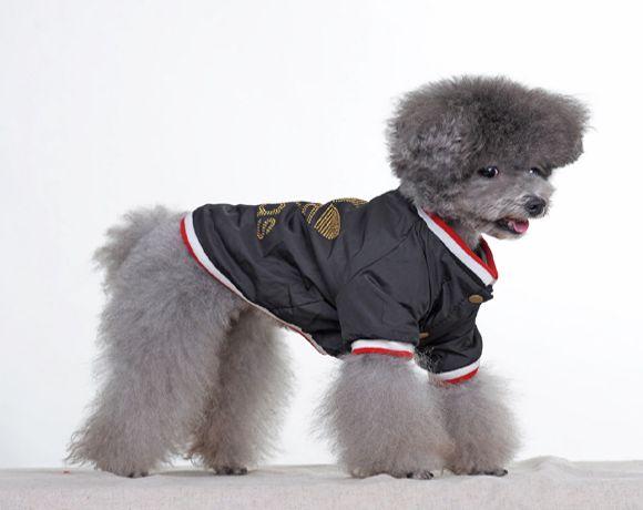 Adidas Dog Coat Dog Clothes Dog Clothes Dog Coats Doggy