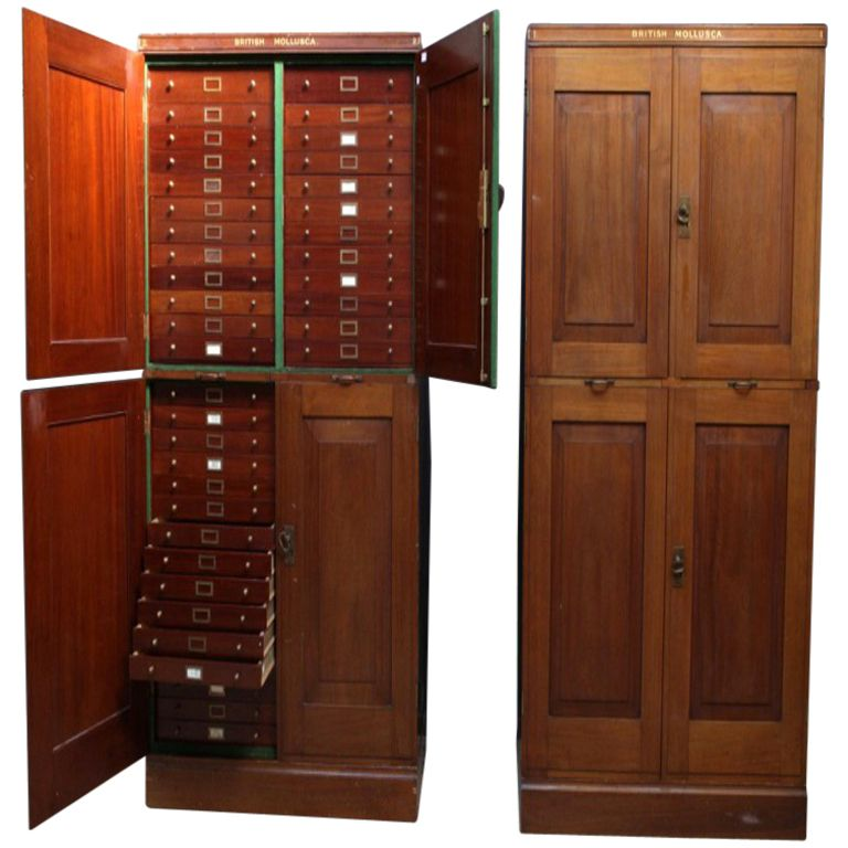 a pair of specimen museum cabinets | modern cabinets, furniture