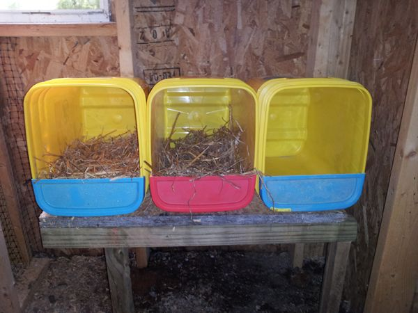 Bucket Nesting Boxes For Our Chickens Made From Old Cat