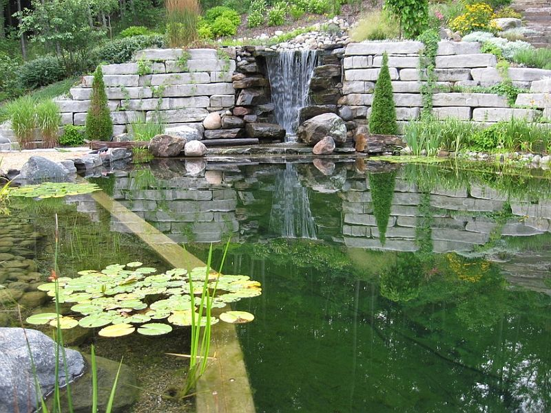 Natural Swimming Pools Design Ideas, Inspirations, Photos Natación