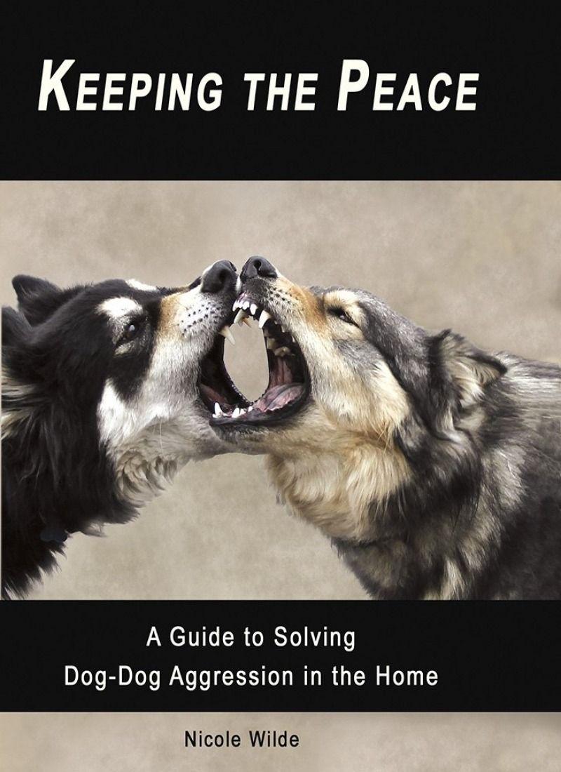 Power Of Positive Dog Training Paperback Pat Miller Positive