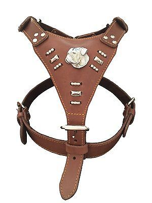 Hand made #extra large heavy duty leather dog #harness american pit bull #brown,  View more on the LINK: http://www.zeppy.io/product/gb/2/191845123538/