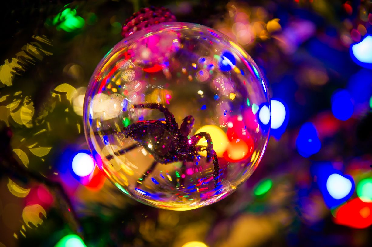 Tree # 18 Tree Name: Nightmare Before Christmas Providence Festival ...