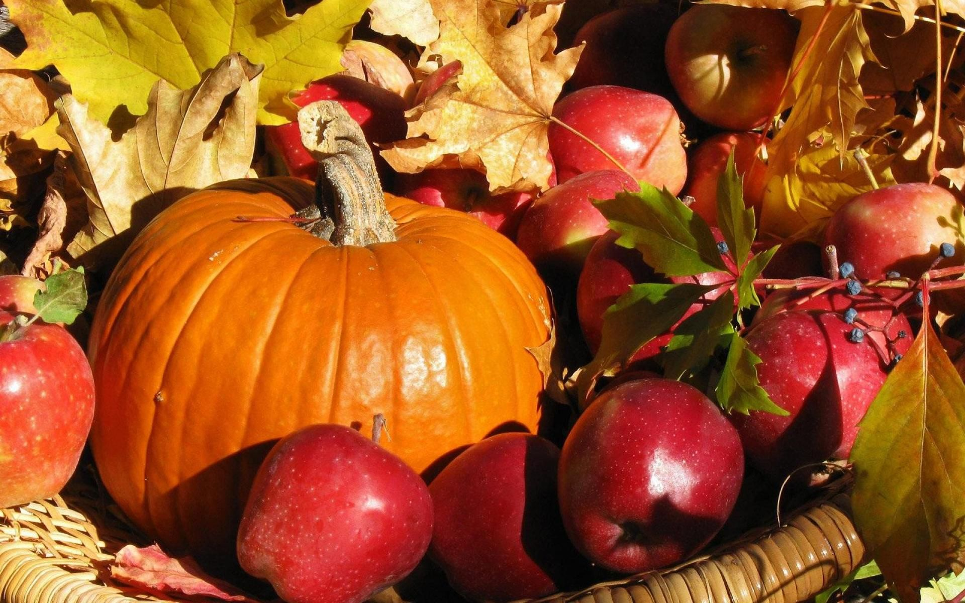 Fall Harvest Wallpapers High Quality Natures Wallpapers