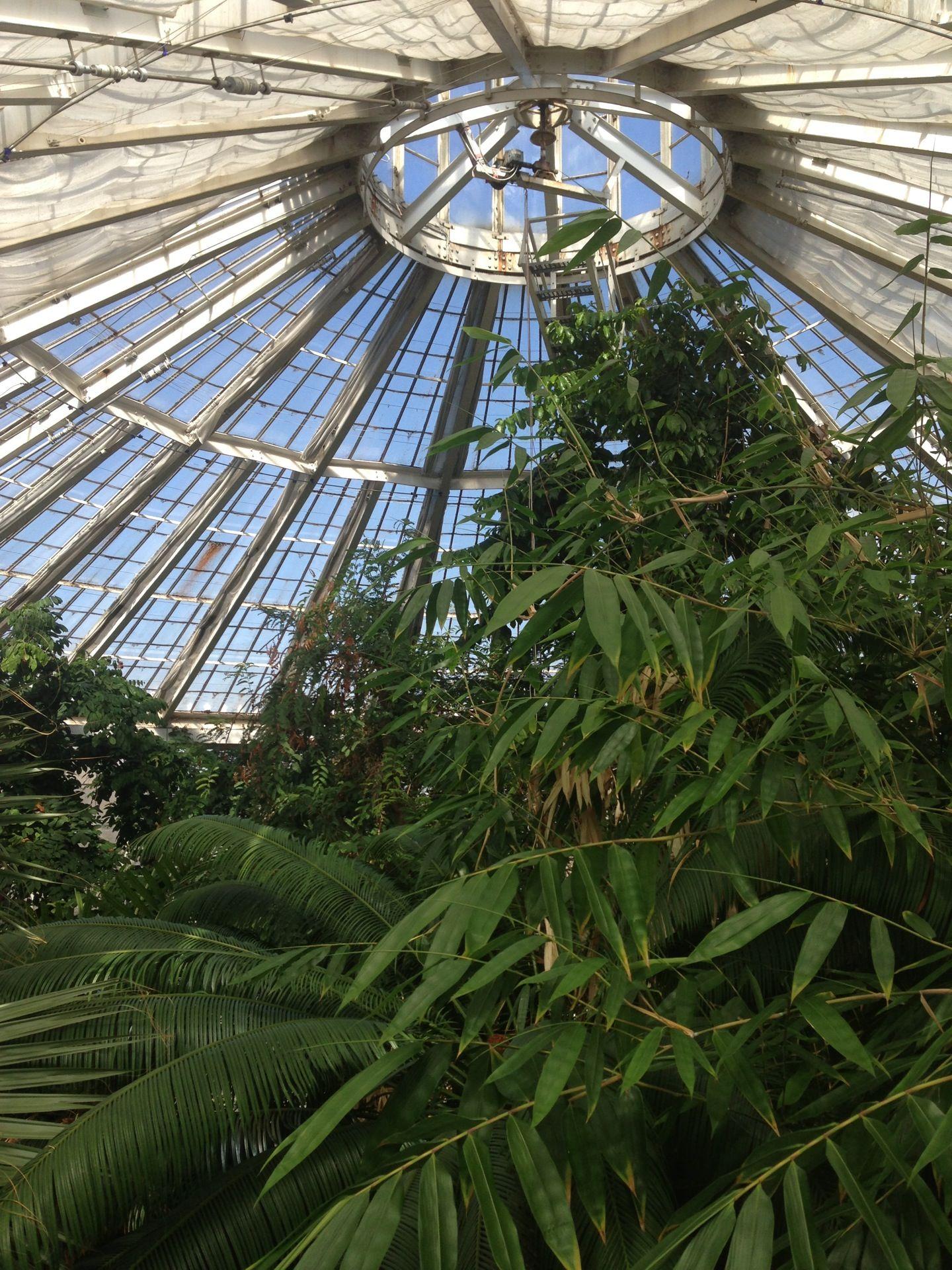 Botanisk have kbh