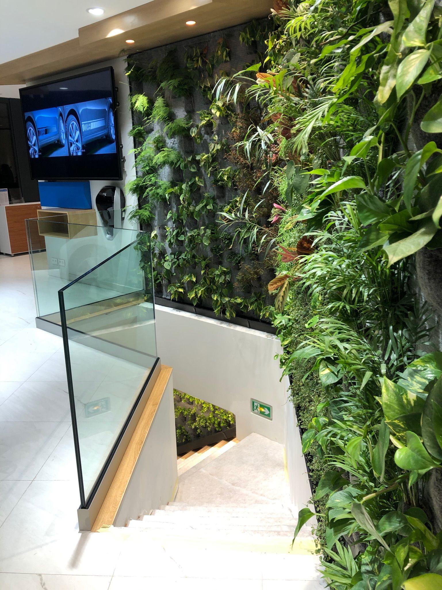 mur végétal intérieur en 2020  mur vegetal mur végétal