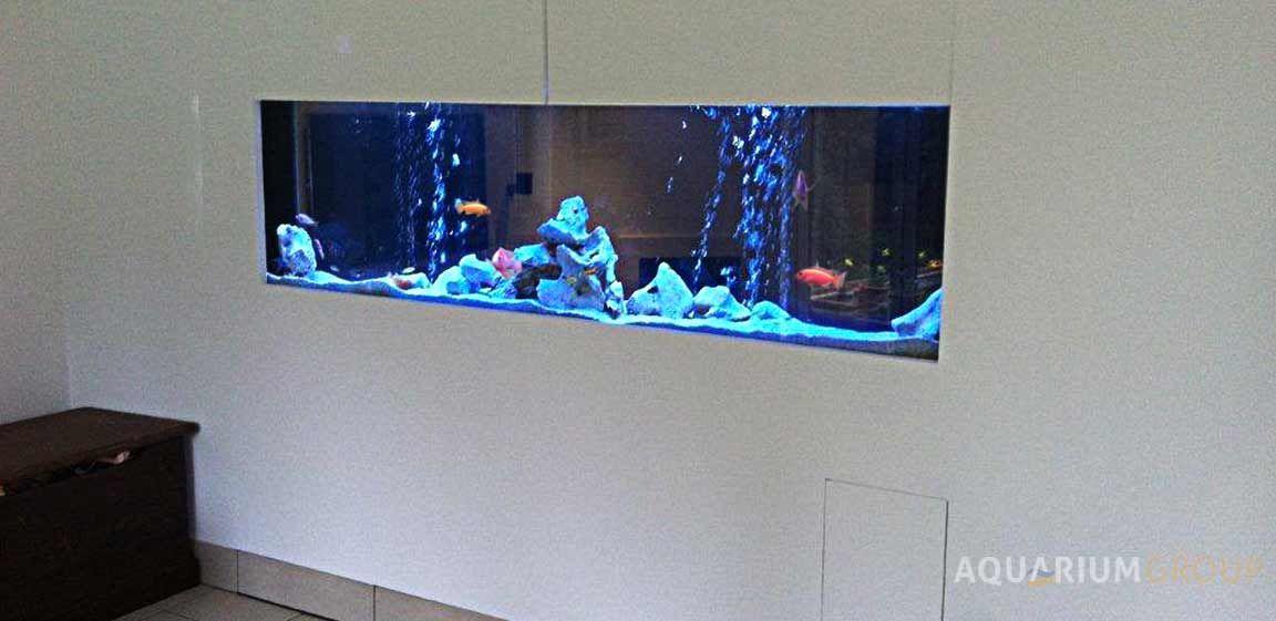 Through Wall In Wall Aquarium Wall Aquarium Fish Tank Wall Fish Tank