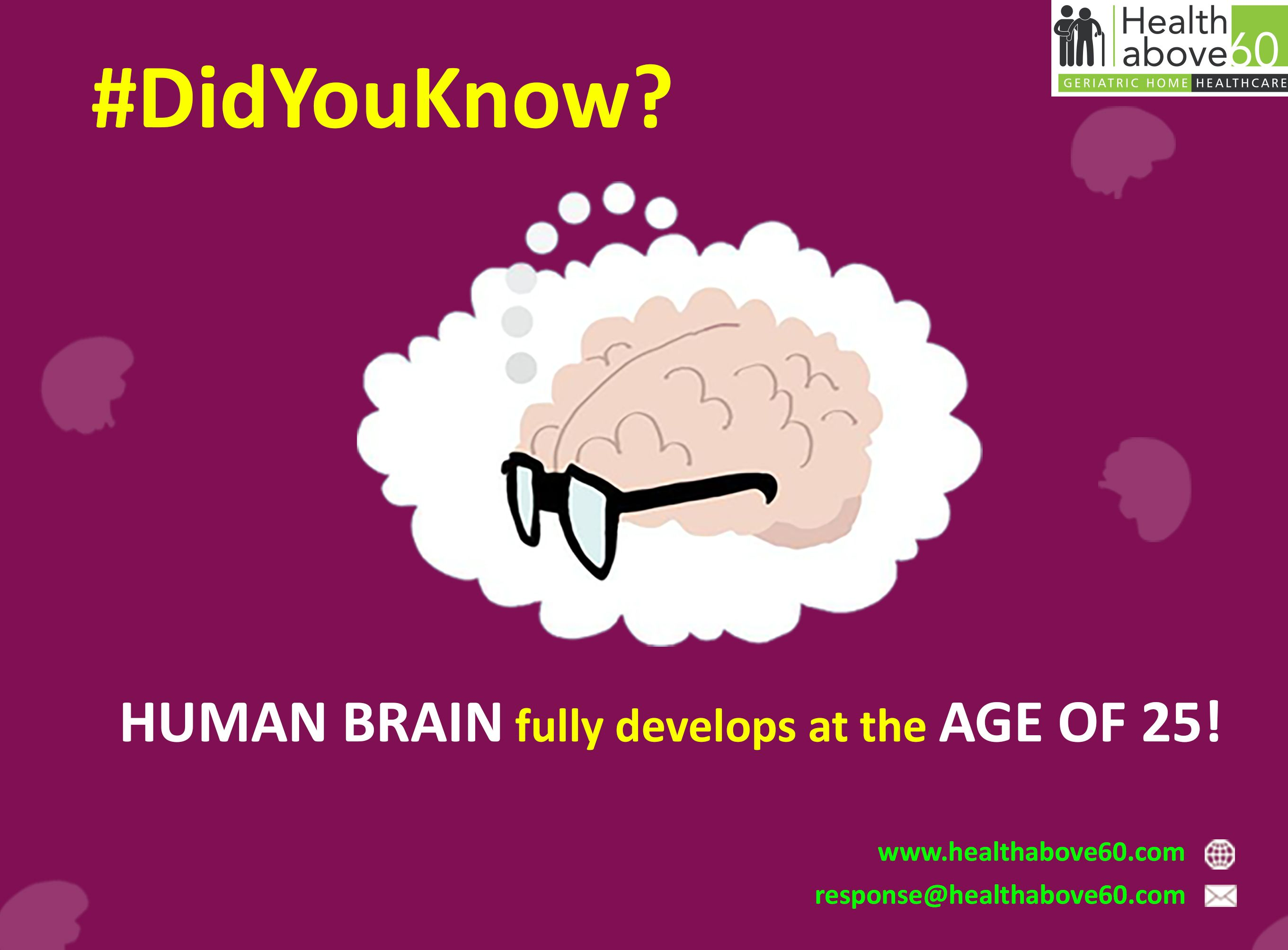 Most scientist claim that the brain is fully developed by ...
