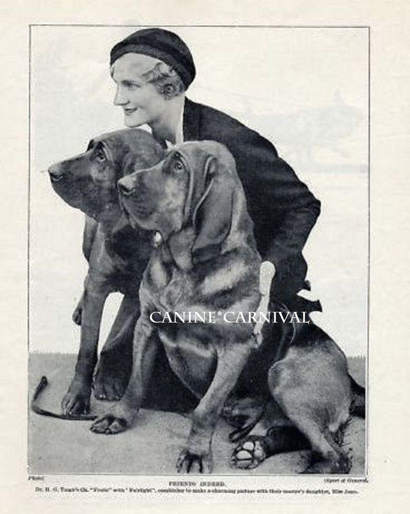 BLACK PUG OLD VINTAGE 1934 DOG PRINT PAGE