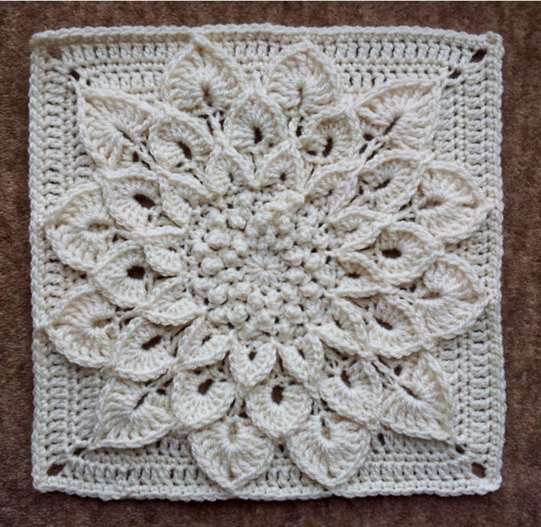 Lujo Cráneo Patrón Chal Crochet Galería - Manta de Tejer Patrón de ...