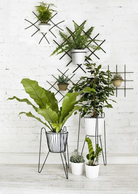 Jak Byc Slow W Pedzacym Swiecie Kilka Praktycznych Porad Plant Hanger Plants Green Interiors