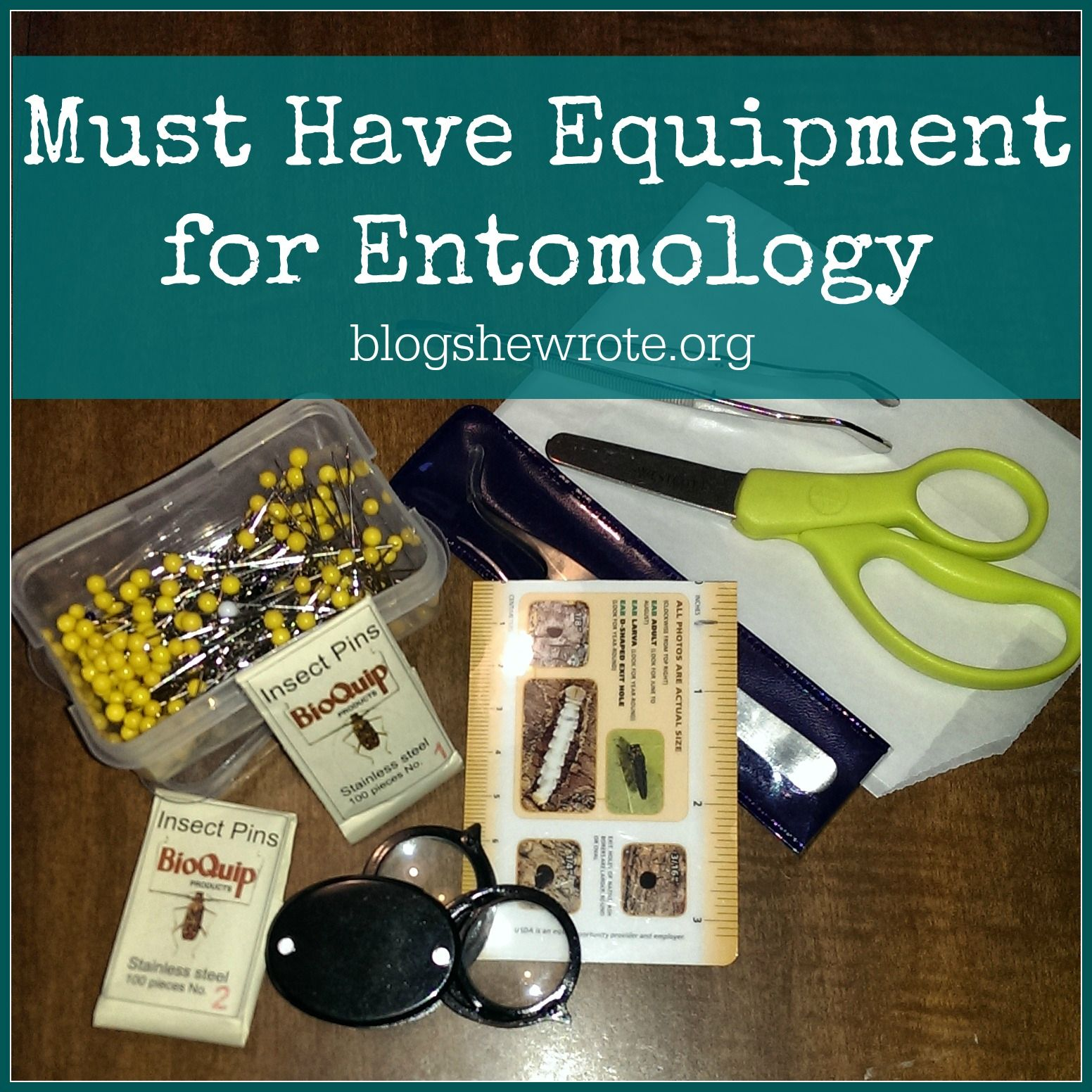 Must Have Equipment For Entomology Entomology Science Biology Forensic Science