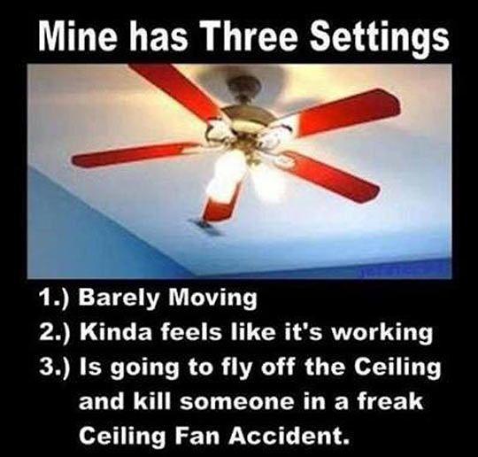 Real Fan Settings