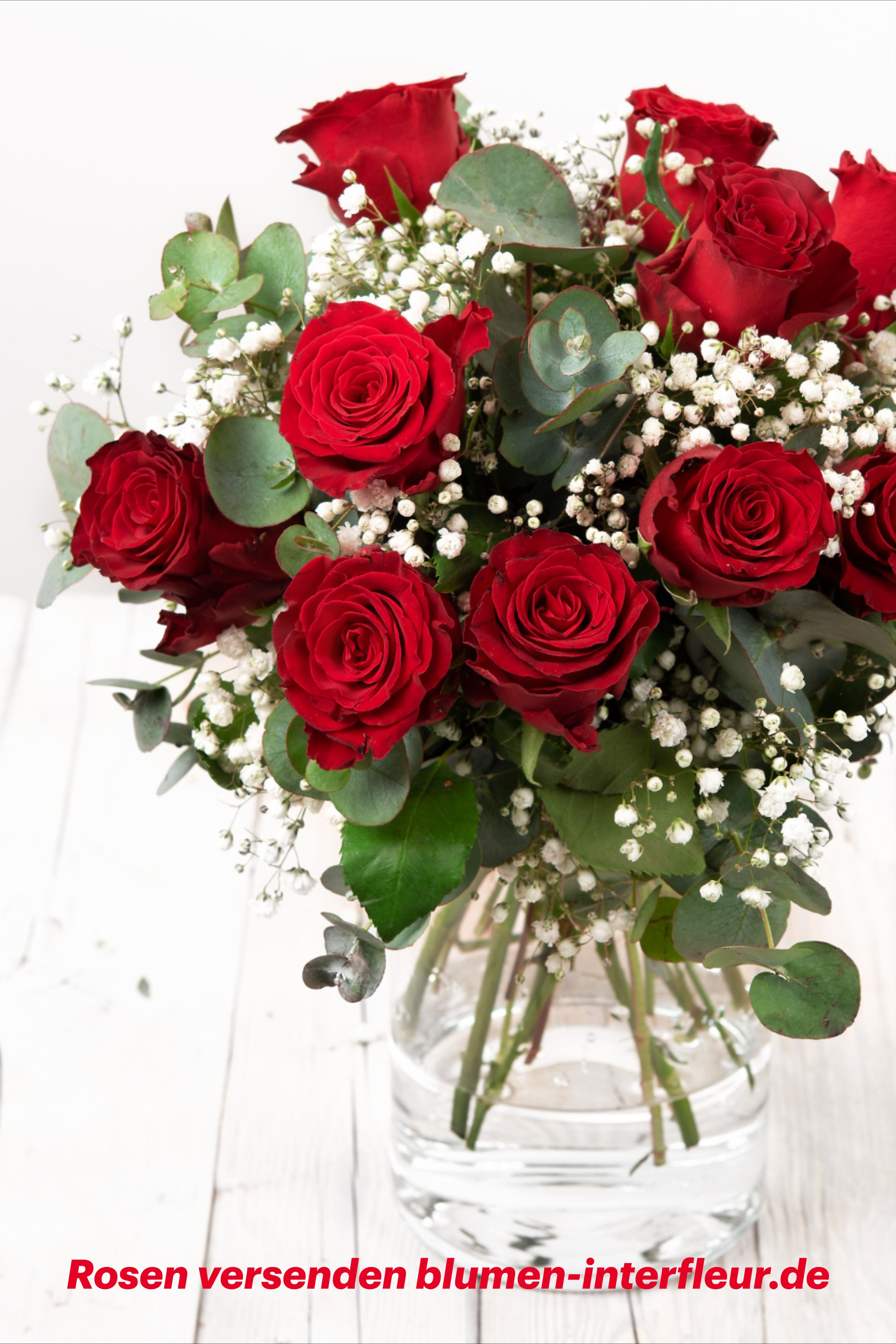 Rosenstrauss Blumenstrauss Casanova Rote Rosen Und Schleierkraut Blumenversand Zum Valentinstag Rosenstrauss Blumenstrauss Rosen