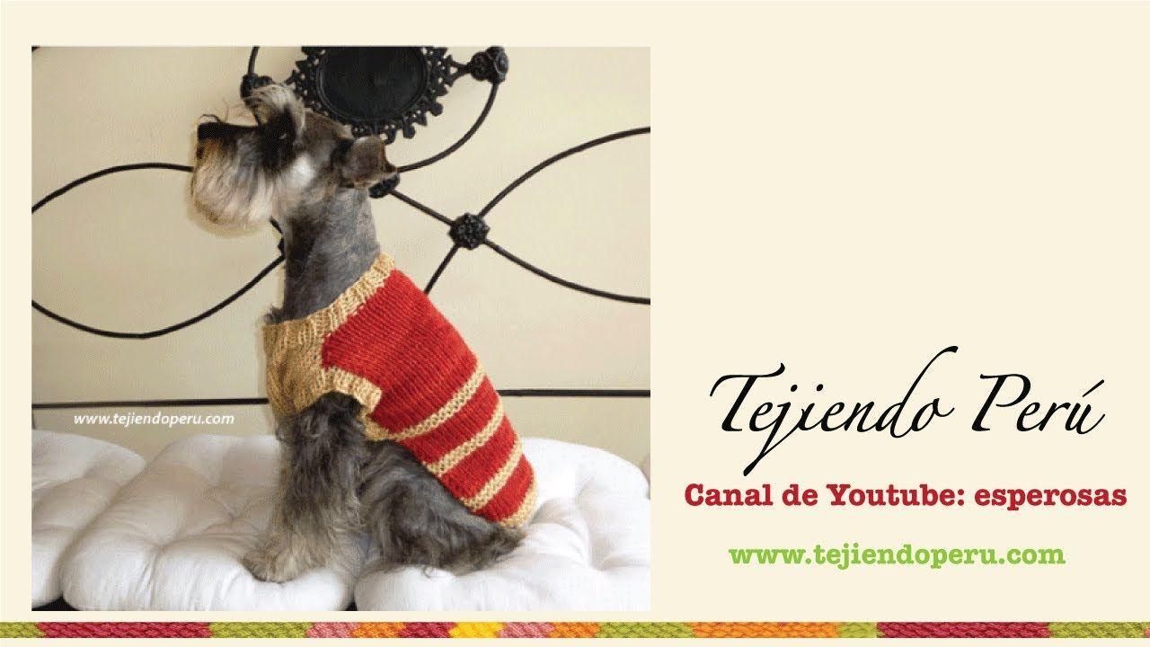 Abrigo para perrito mediano tejido en dos agujas | perros | Dog ...