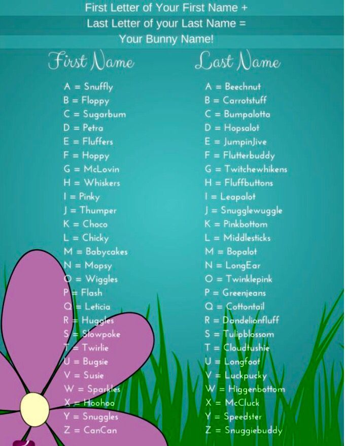 Bunny Name Bunny Names Funny Name Generator Holiday Calendar