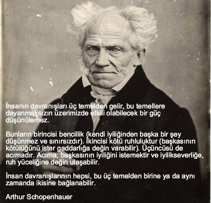 arthur schopenhauer, düşündüren sözler, düşündüren özlü ...