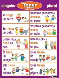 How to conjugate the verb tener in present indicative spanish notes also best expressions images class learning rh pinterest