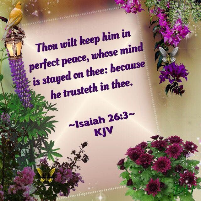 Pin by Mary Sanders on WHERE TRUTH LIES | Beautiful bible ...