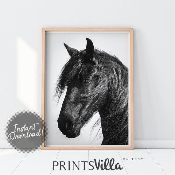 Photo of Horse Print, Farm Animal Poster, Rustic Wall Art, Black And White, Farm Wall Decor, Digital Prints, Horse Photo Printable Animal Photography