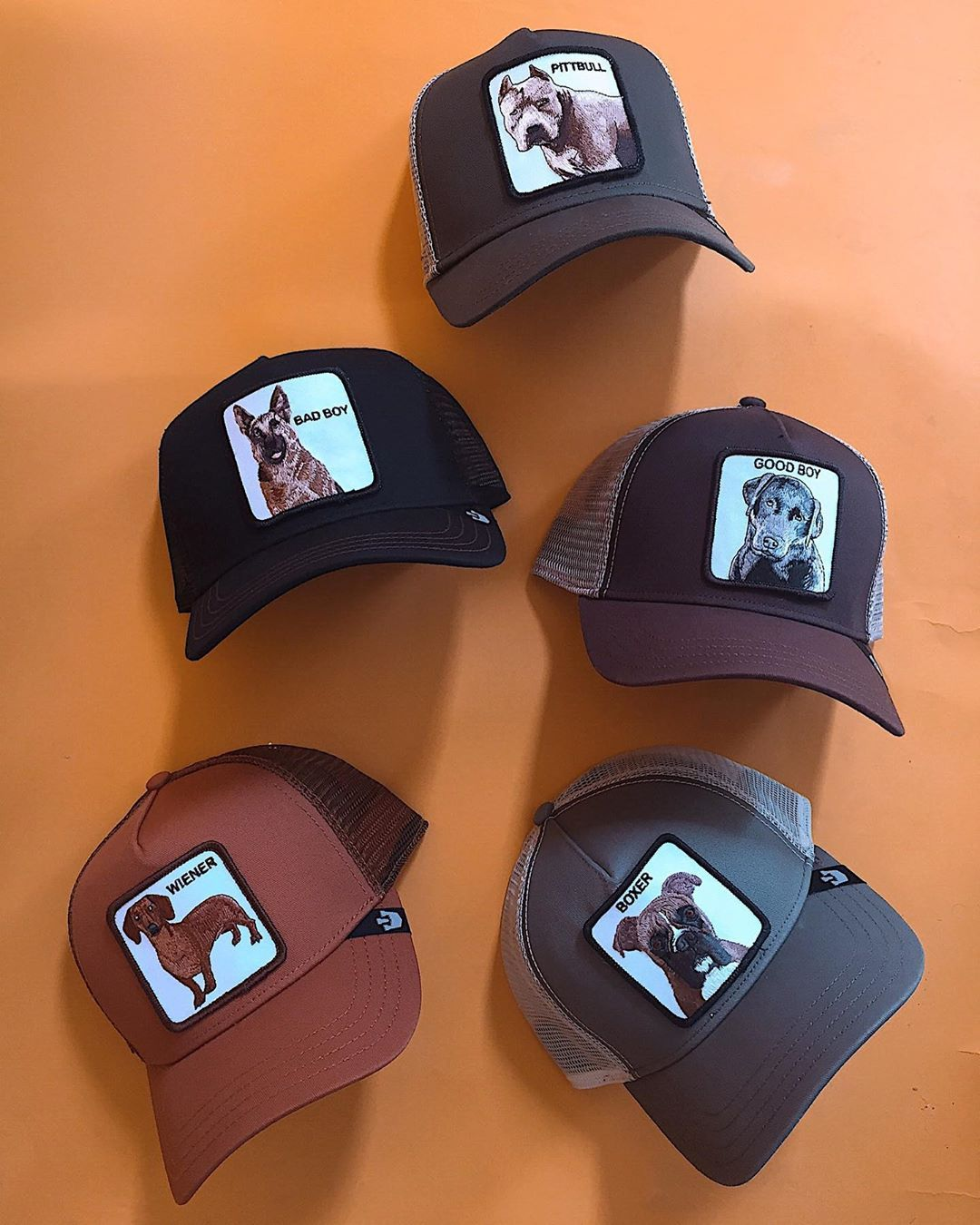 Goorin Bros Bold Hatmakers On Instagram Hot Diggity Dog These New Bad Boys Will Be Ready For Their Loving Homes In A Couple Months En 2021 Gorras Famosos