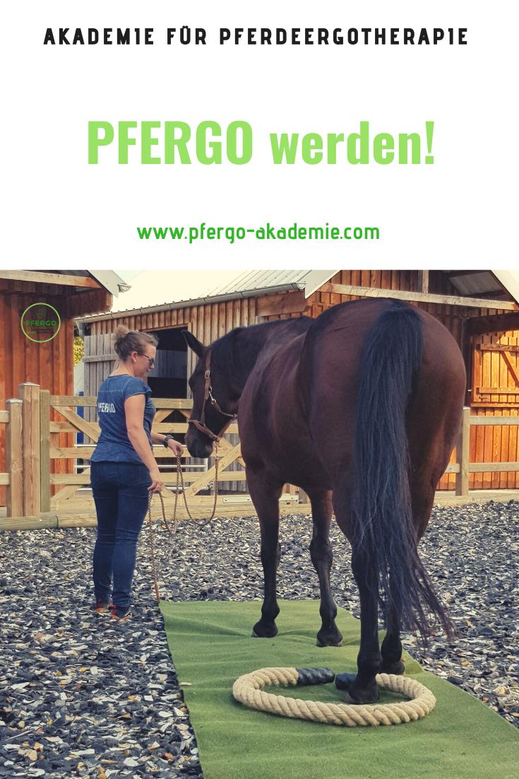 pfergo pferdeergotherapie in 2020  pferde training