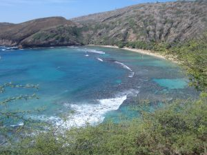 ac91cca0c05d0b5c1f170bff89e25d4b - Hawaii Board Of Nursing Application Status