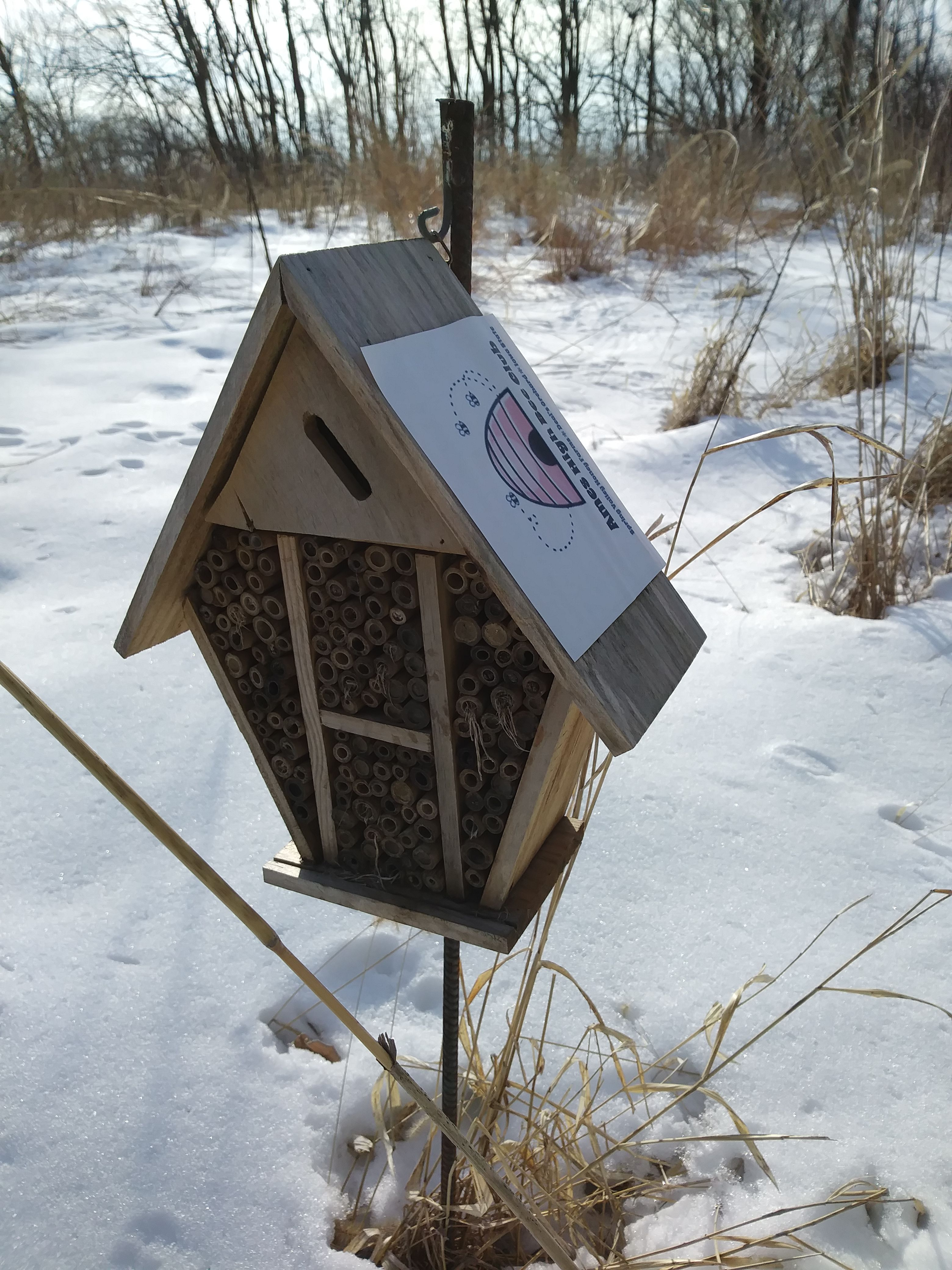 Discovered This Bee Home On A Bike Trail At Big Creek State Park