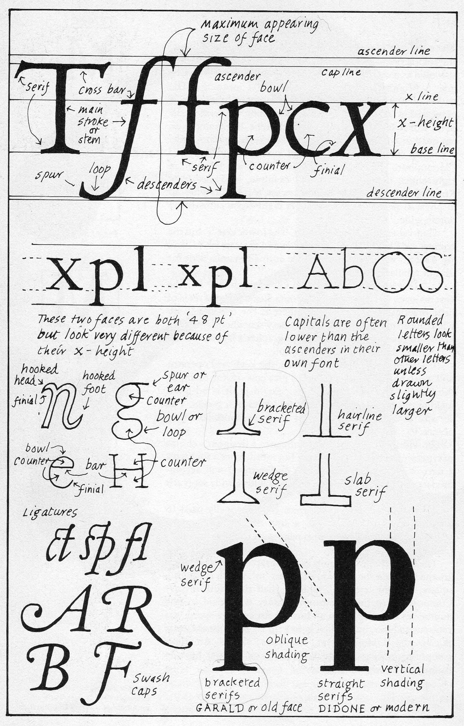 About Typography Basic Notions