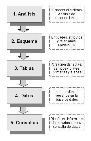 Fases Para La Creación De Una Base De Datos Base De Datos Lenguaje De Programacion Ingenieria De Software