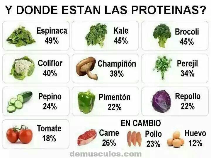 que daughter las proteinas de creación zooid y vegetal