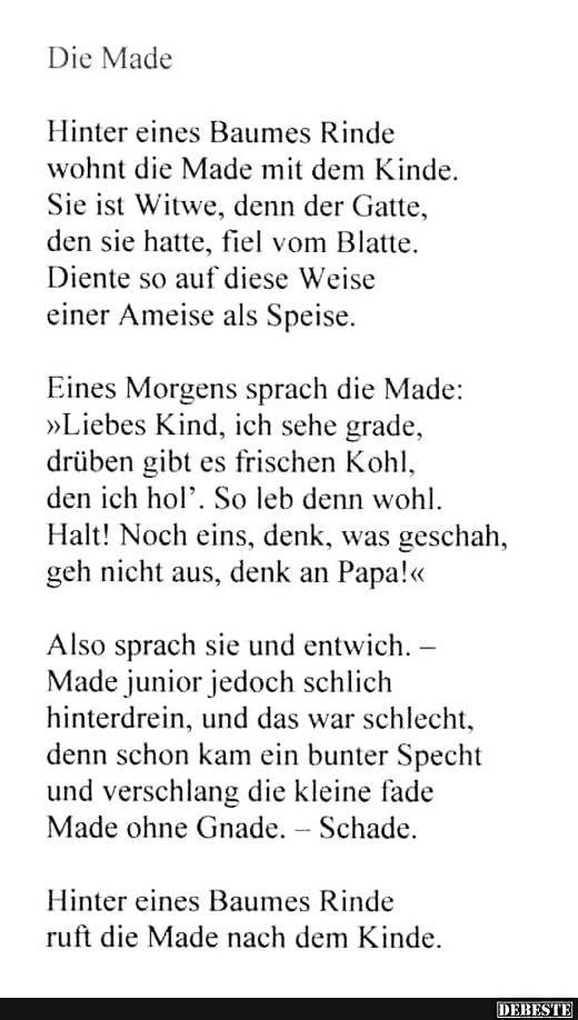 Specht gedicht
