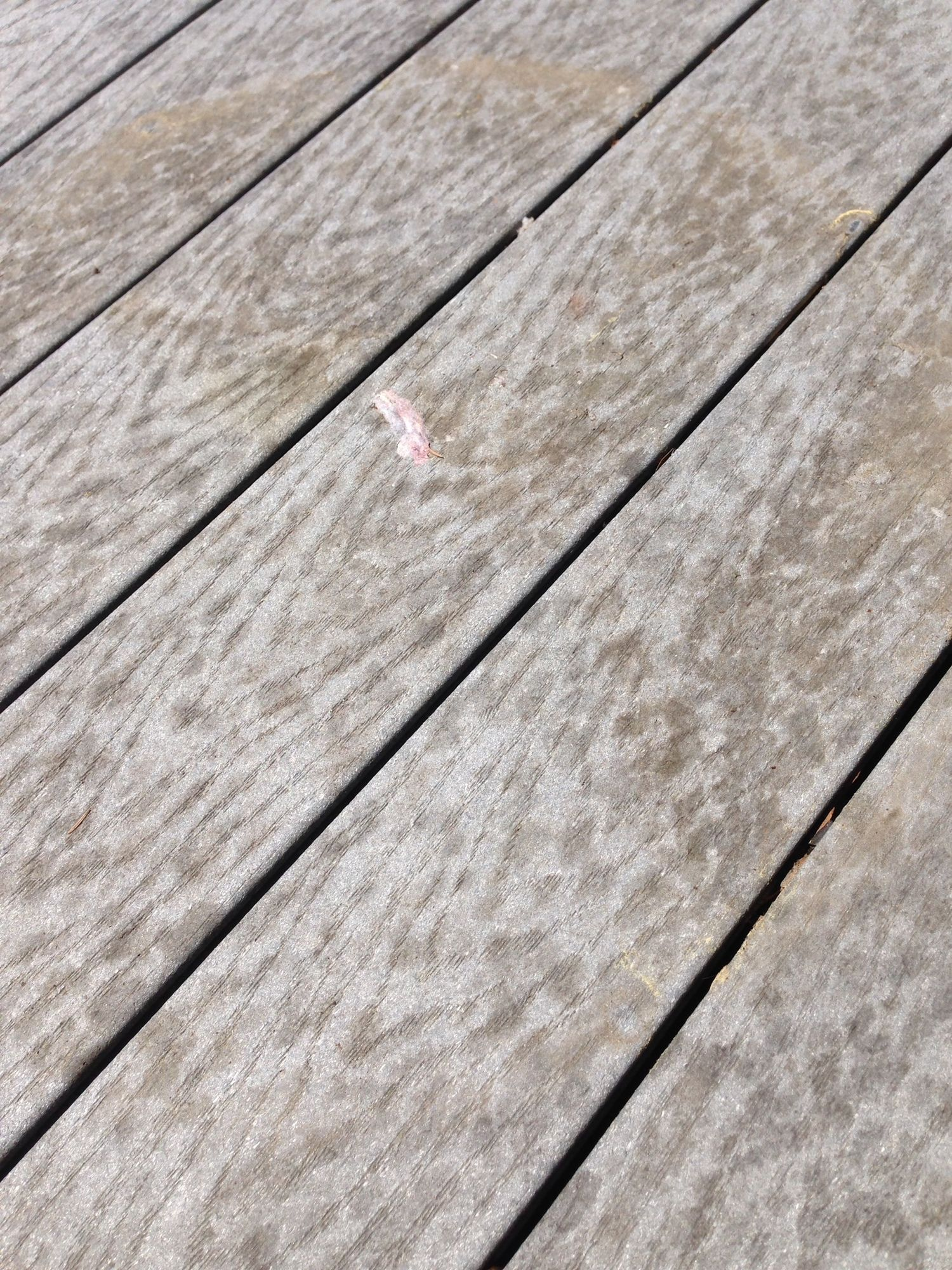 How To Clean Your Composite Deck Easy Care And Cleaning