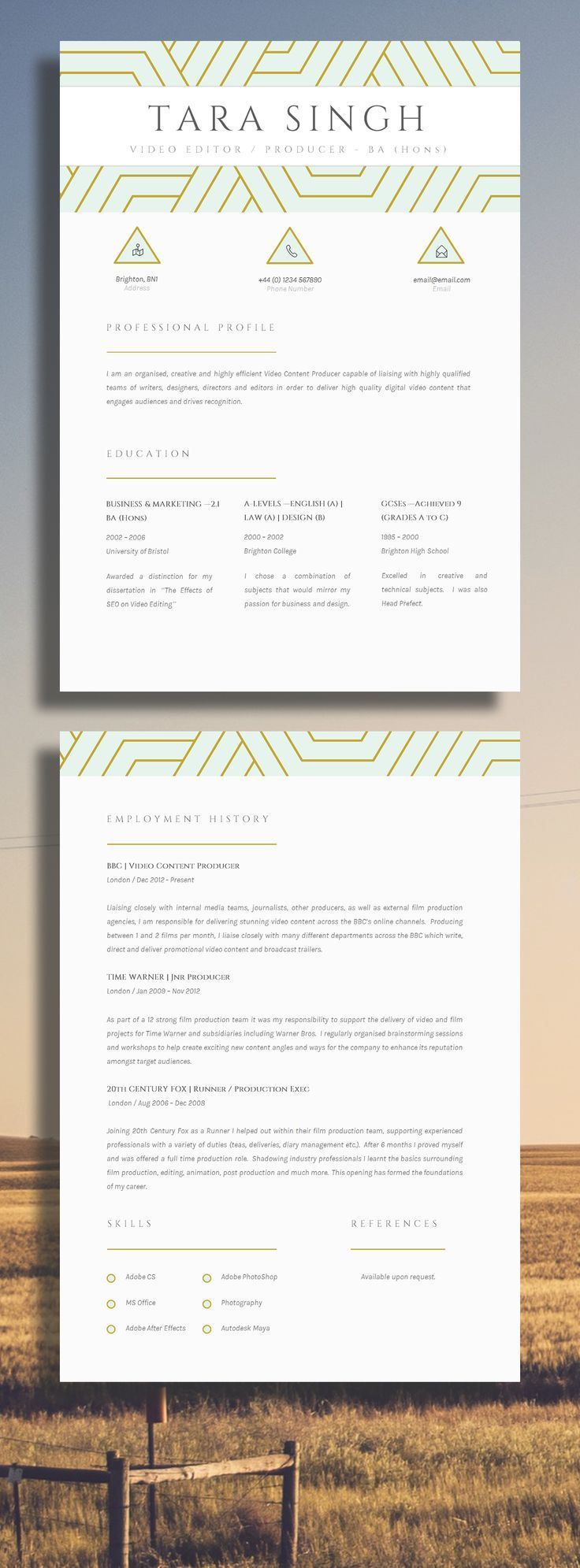 An elegant and creative CV design gives a professional approach to ...