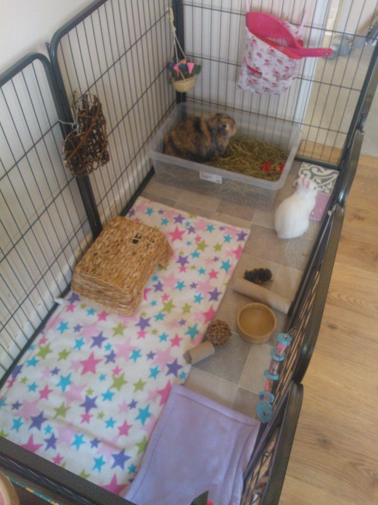 Neji Luna S Cage Indoor Rabbit Set Up