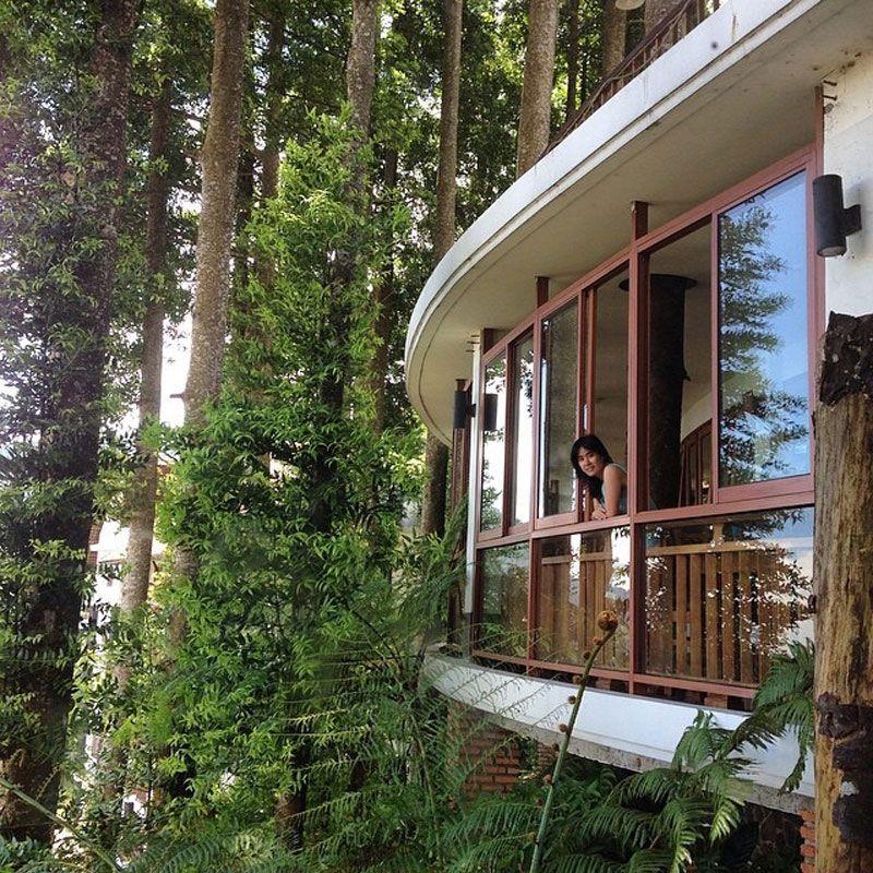 19 hotel bernuansa alam di Bogor/Puncak dengan sensasi