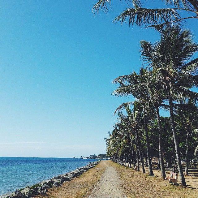 Promenade Pierre Vernier. #ocean #coconuttrees #newcaledonia