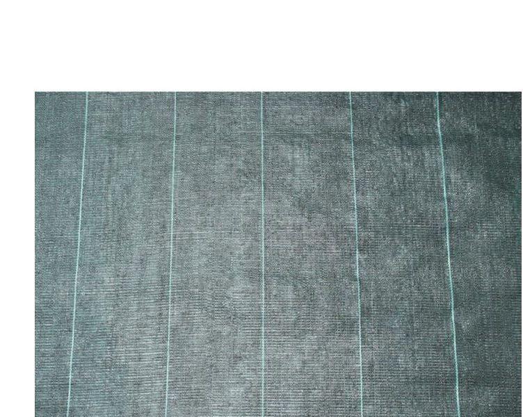 Nature Bache De Sol De Controle Des Mauvaises Herbes 2x5 M Noir 6030301