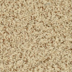 Stainmaster Day Trip Petprotect Sauna Frieze Carpet Sample 6311 611 Frieze Carpet Carpet Samples Indoor Carpet