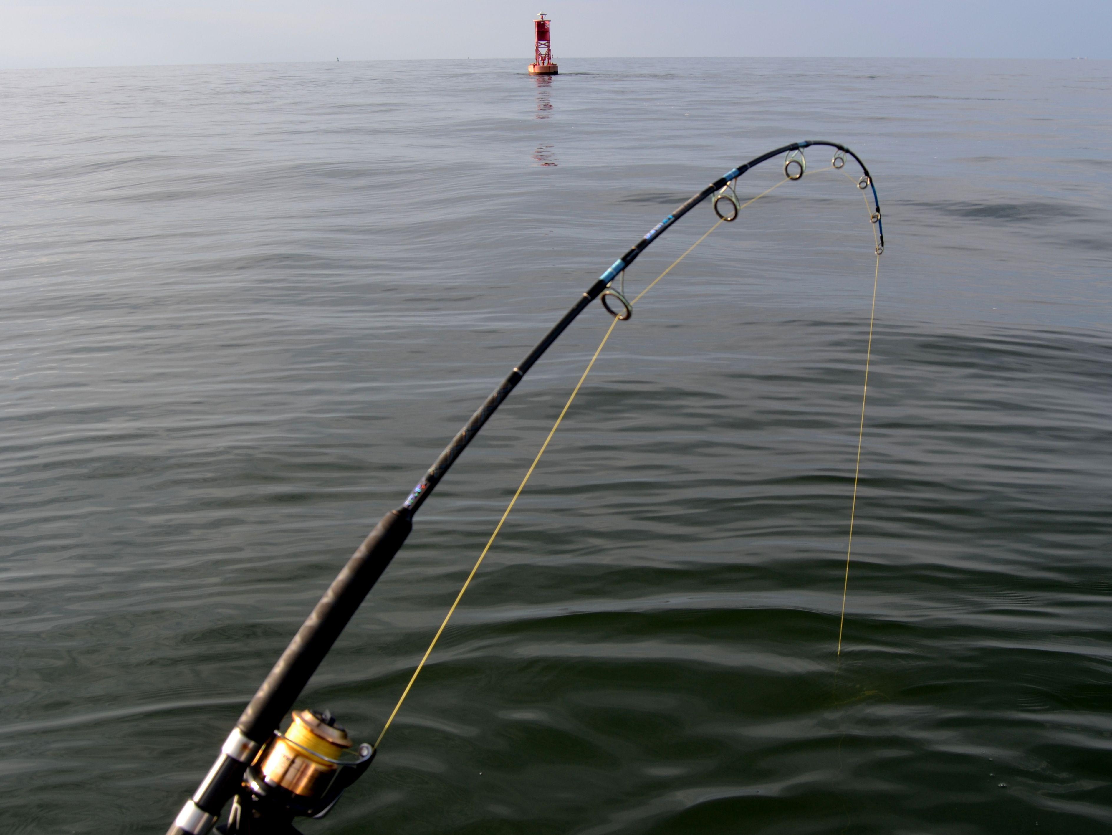 Fishing Pole Bing Images Bent Rod Fishing Rod Rod