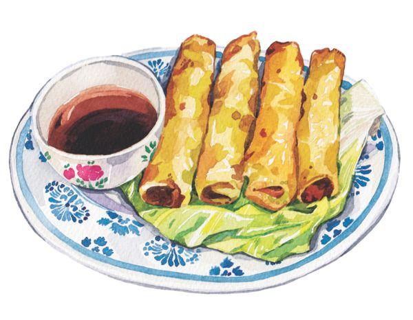 Cuisine Illustration spring rolls illustration soy sauce on a plate | food illustration