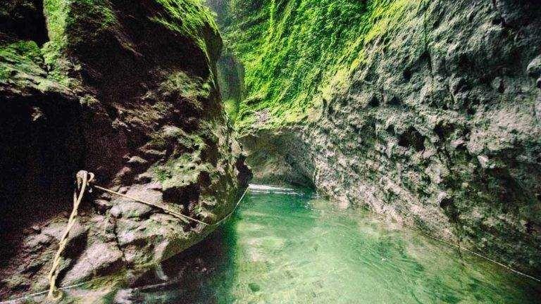Le Site Web Auquel Vous Essayez D Acceder Est Suspendu Randonnee Martinique Blog Voyage