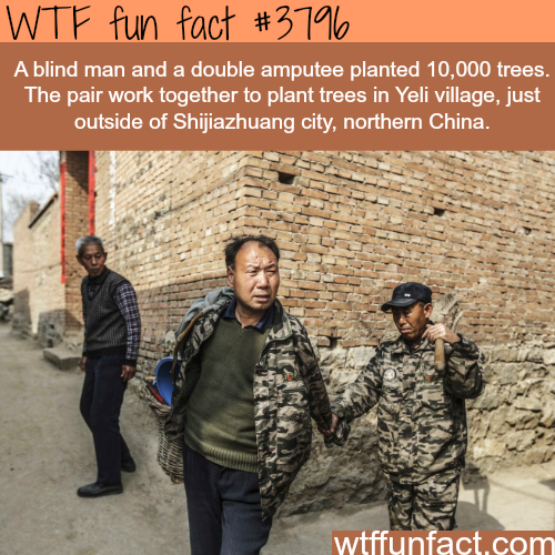 postive text messages from people you care about Blind man and double amputee planted 10,000 trees - WTF fun... text messages from people you care about Blind man and double amputee planted 10,000 trees - WTF fun...Blind man and double amputee planted 10,000 trees - WTF fun...