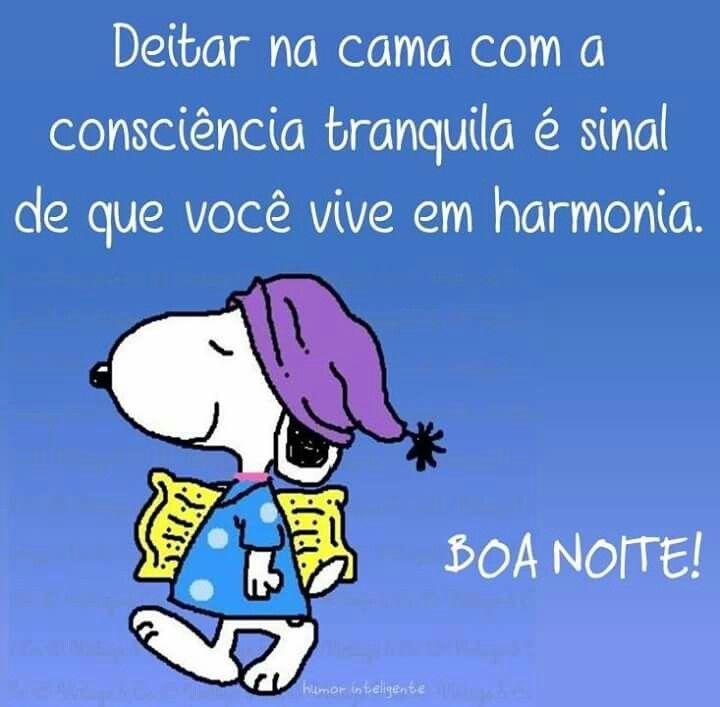 Boa Noite Com Imagens Snoopy Boa Noite Frases De Boa Noite