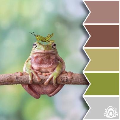 #Farbbberatung #Stilberatung #Farbenreich mit www.farben-reich.com FROGGY - color palette Pastel Feather Studio
