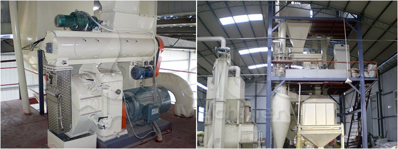 poultry feed pelletizing system for manufacturing large