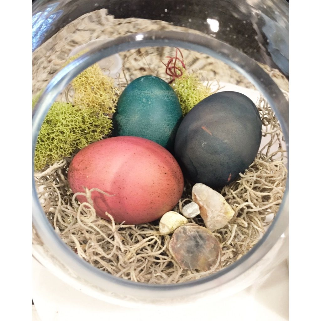 Brown Eggs Dyed With Food Coloring